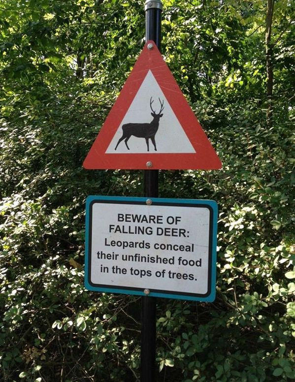 40 funny zoo signs funnyfoto funny pictures videos gifs